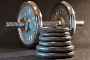 weight plates for working out at home